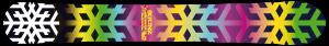 monoski-flake-shot-188-2016-H